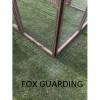 6FT x 6FT Run 16G Dog Chicken Bird Aviary Fox Proof Pen