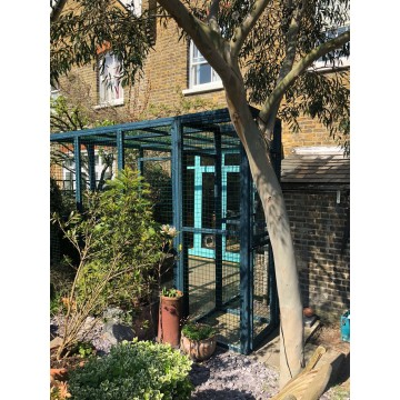 Blue Painted Catio